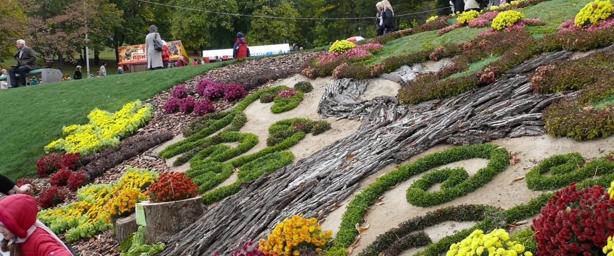 Отдых в Крыму. Бал хризантем в Никитском ботаническом саду